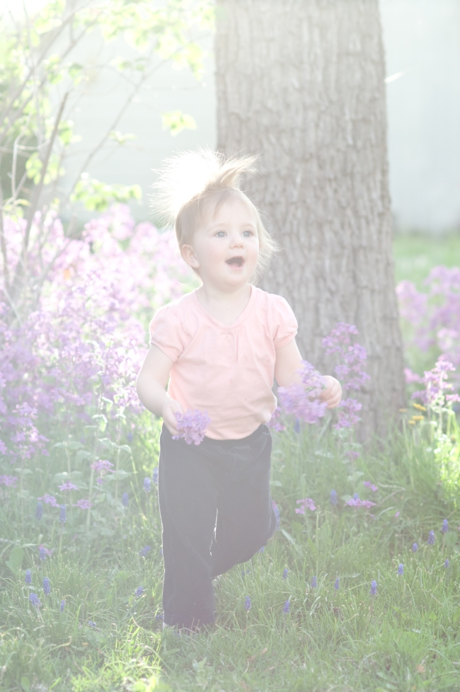 girl, toddler, sunshine, garden, flowers